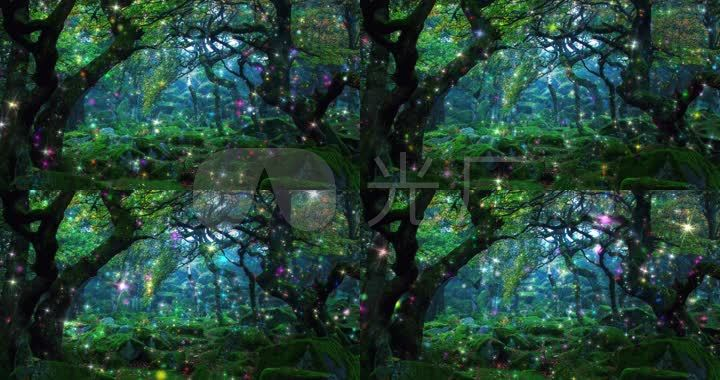4k曲径通幽森林深处_4096x2160_高清视频素材下载(:)图片