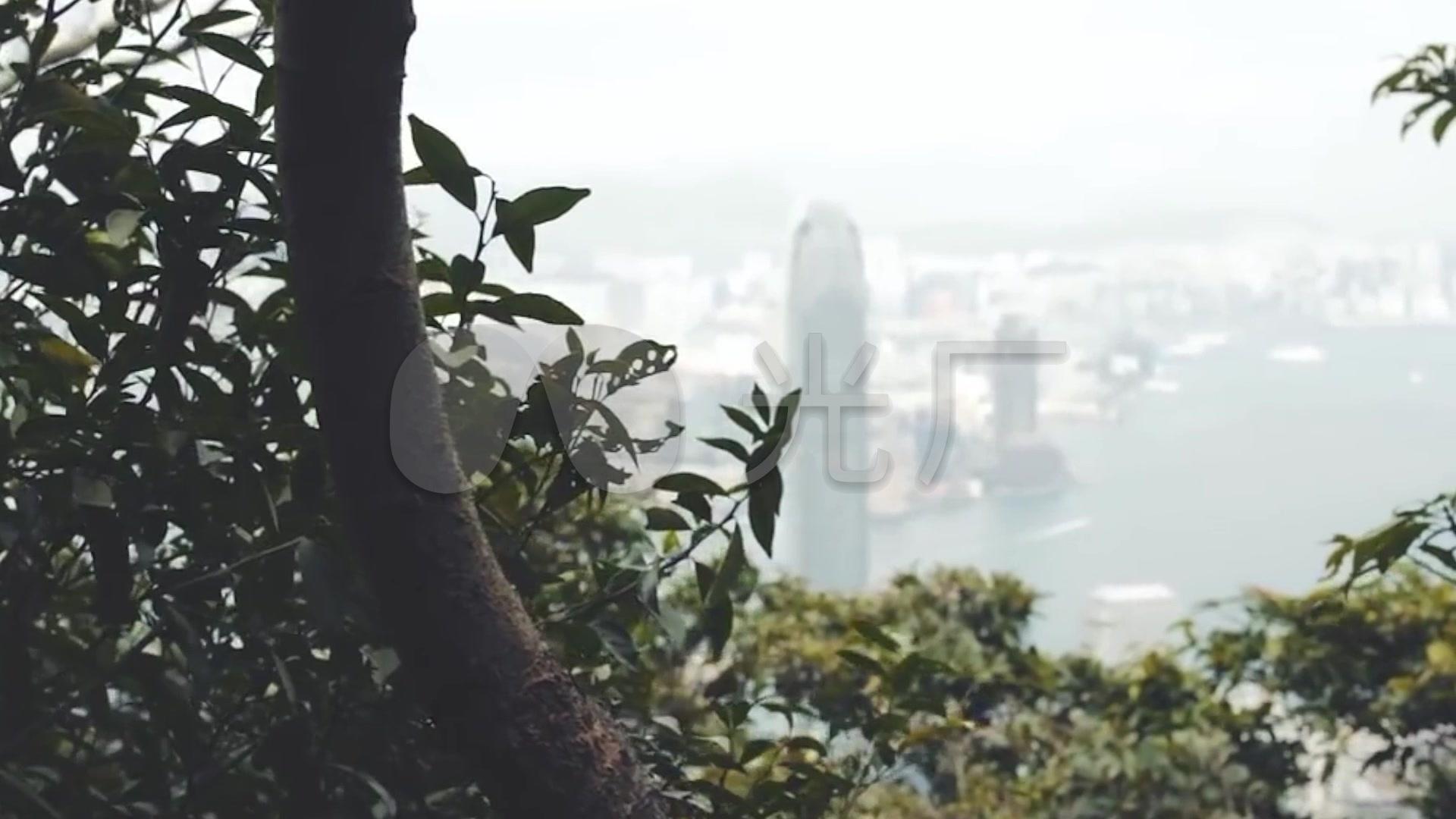 香港夜景维多利亚港抽帧大街小巷_1920X108永顺小视频图片