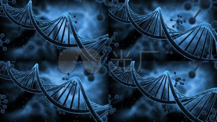 科技感DNA分子结构