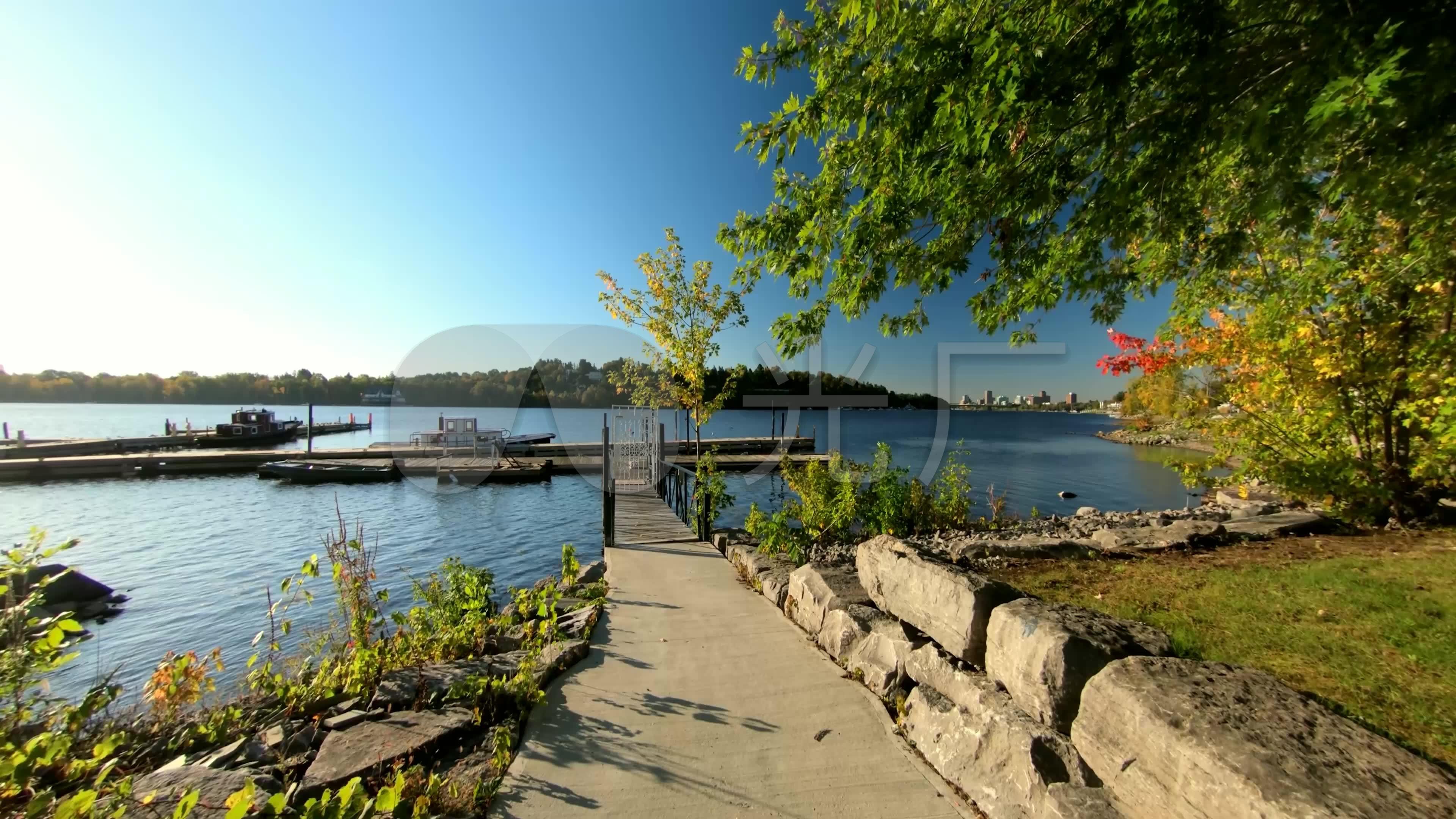 森林氧吧湖边观景台唯美自然景观
