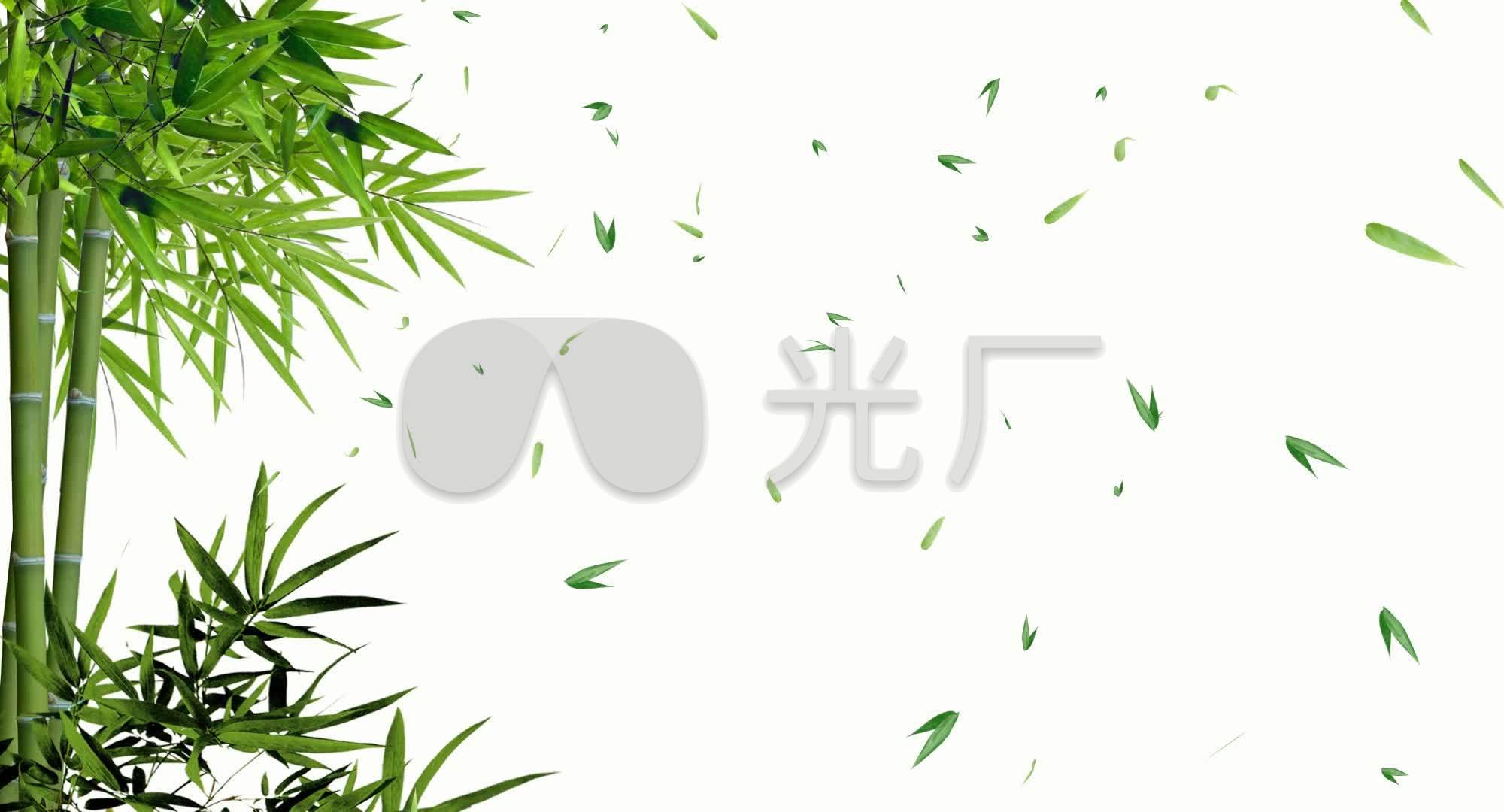 罗刹视频竹子飘带毛竹透明素材视频翠竹_200通道竹叶图片