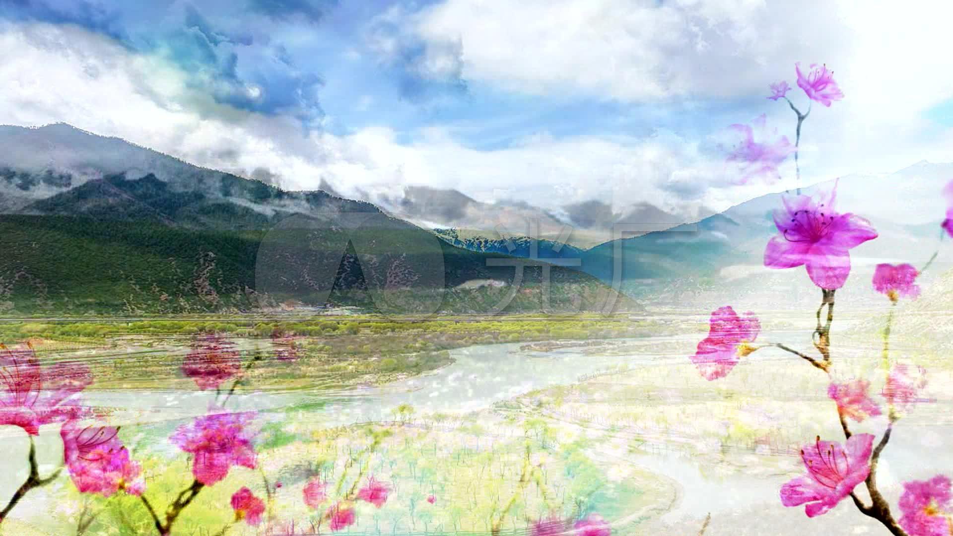 藏族视频《图片谣》LED背景吉祥_1920X108采集视频舞蹈图片