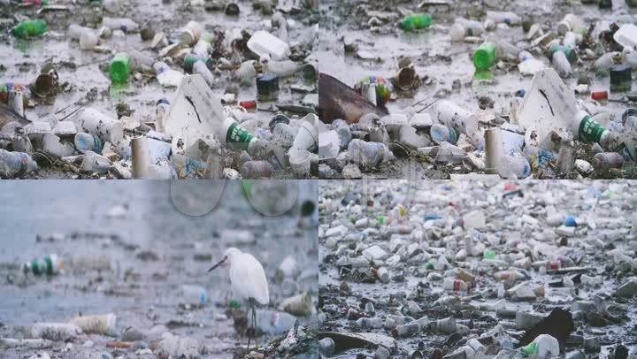 堆倒垃圾环保污染治理生活垃圾垃圾处理环境污染垃圾运输水污染工业化