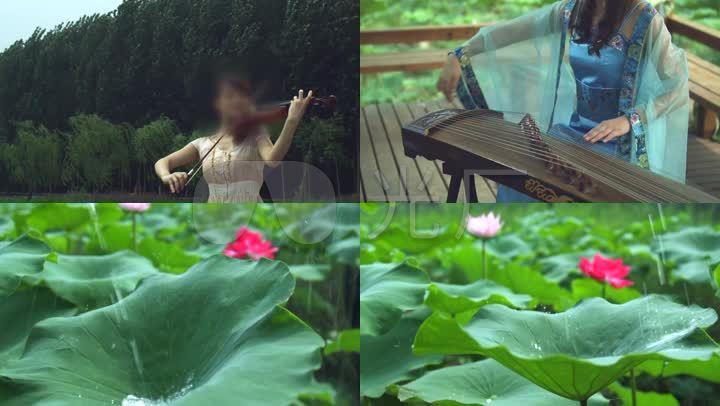 吹视频小提琴弹美景笛子传统_6下载(编号:347古筝英涛图片