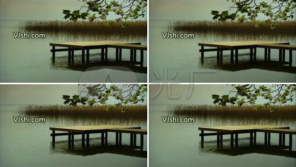 小桥 流水 湖边 湖畔 芦苇