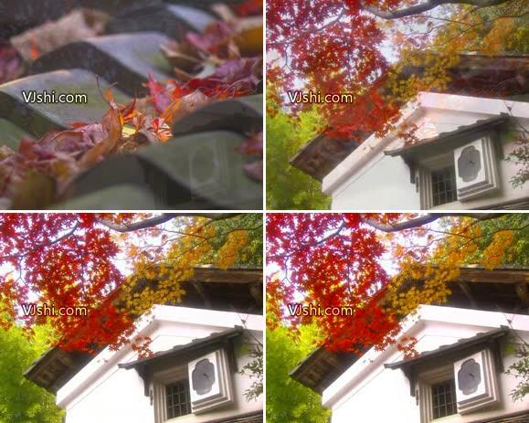 红叶衬下的小屋 枫叶