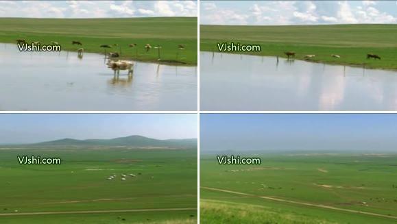 广阔的草原 青藏高原