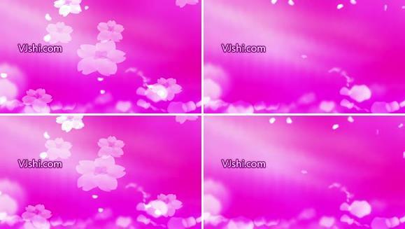 紫色花瓣粒子
