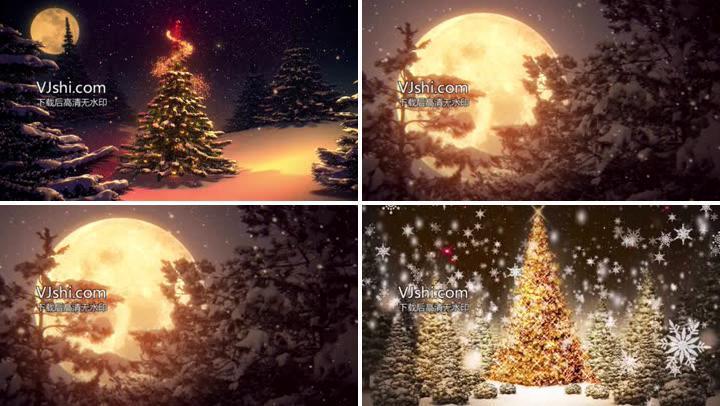 梦幻圣诞夜——月光圣诞树星光