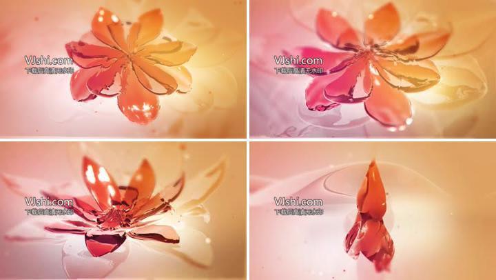 水水花开花