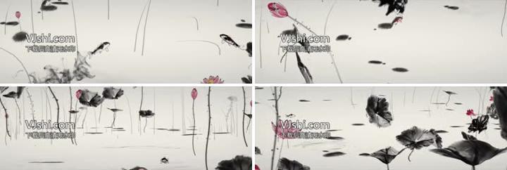 中国风水墨池塘荷叶动画