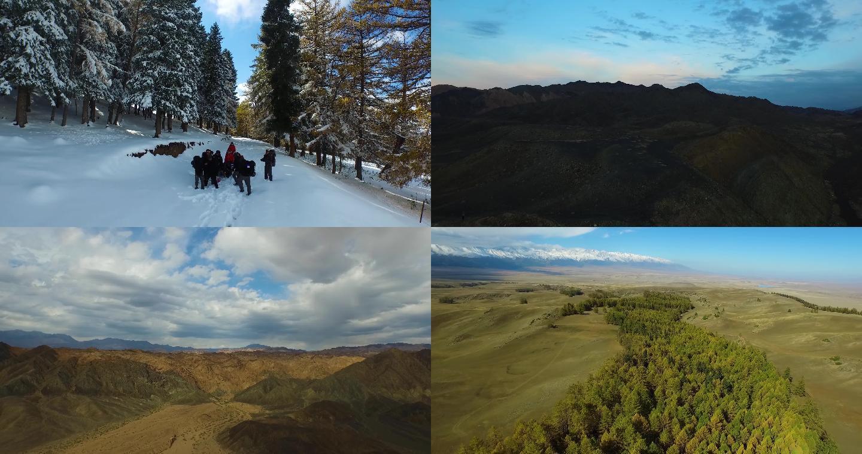 新疆哈密航拍森林雪山