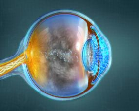 三维眼睛肌理视频素材