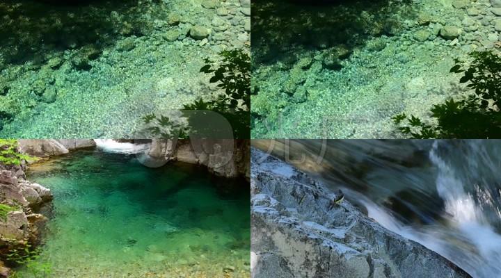 4K森林溪流水潭河水清澈溪水