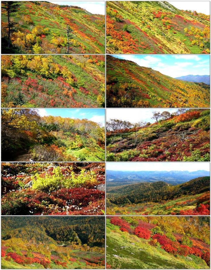 秋天的大山美景