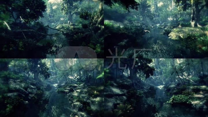 唯美丛林小溪