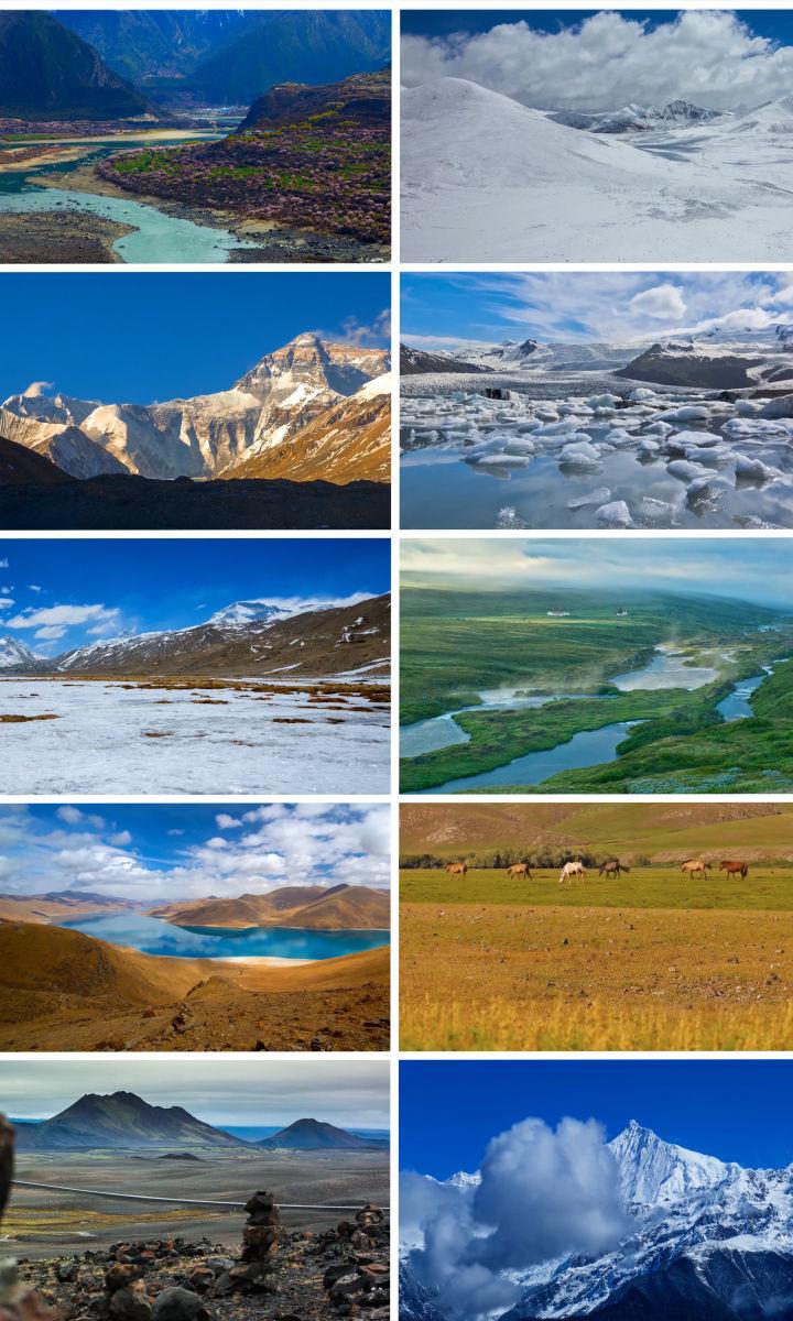 4K级西藏雪山草原牛羊实拍视频素材