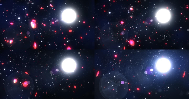 4K循环月下花瓣特效背景