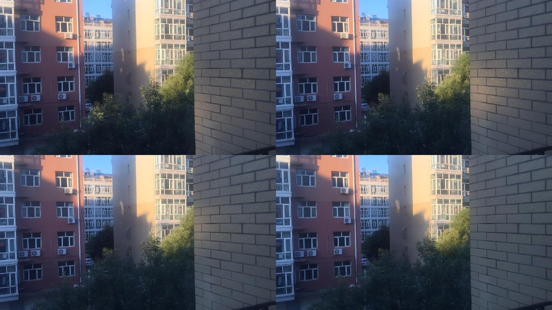 延时拍摄小区楼房大树一角背景