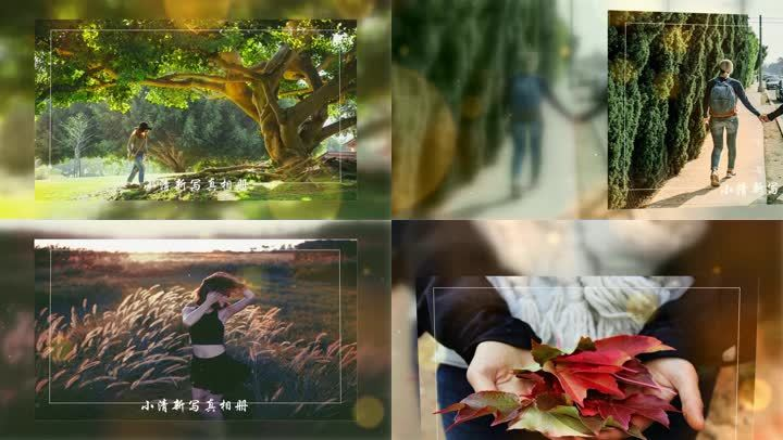ed炫彩光效粒子清新幻灯片视频模板