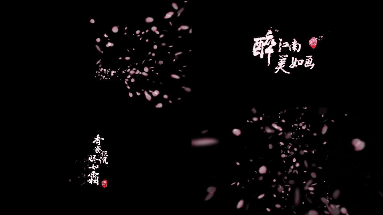 中国风唯美文字字幕