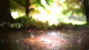 唯美意境下雨路面粒子气泡泡视频素材视频素材