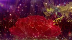歌曲《凤求凰》背景视频视频素材