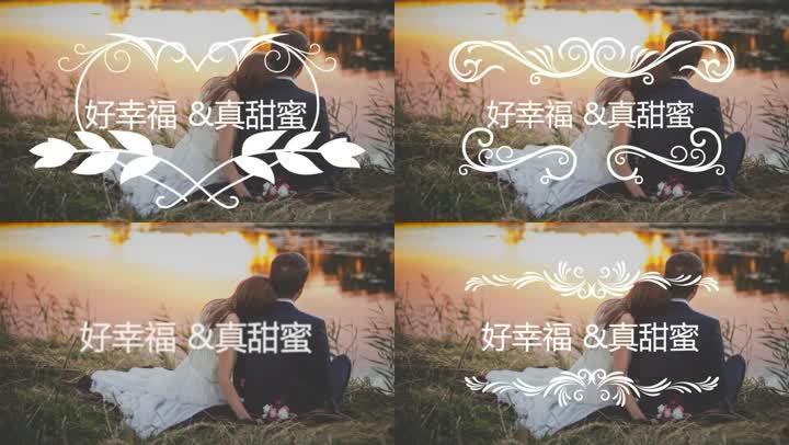 PR婚礼字幕花纹标题