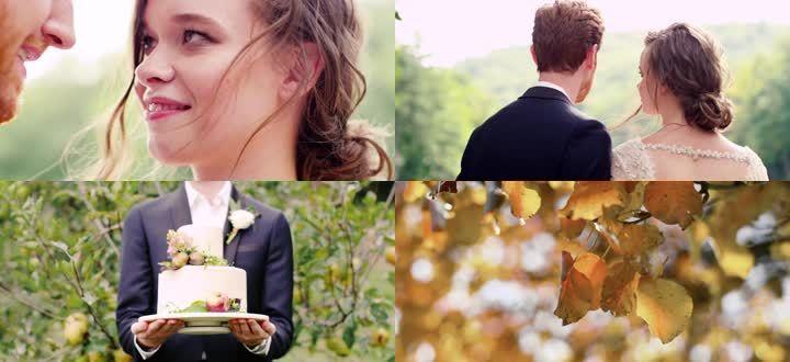 浪漫婚礼情人节视频素材