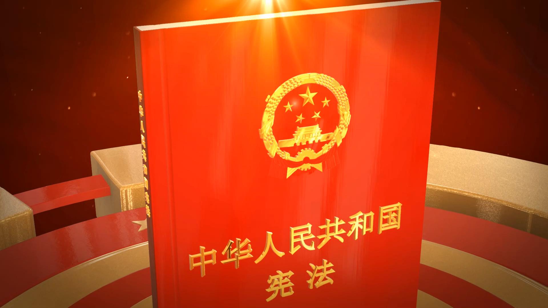 党政政府宪法宣传片头会声会影模板01