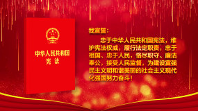 【强烈推荐·原创】4K宪法宣誓循环背景视频素材