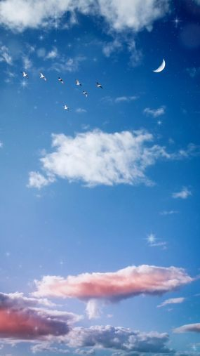【竖视频】蓝天白云朵朵视频素材