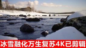 冬去春来(唯美连贯镜头)视频素材
