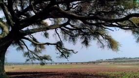 中非友谊-中非经贸视频素材包