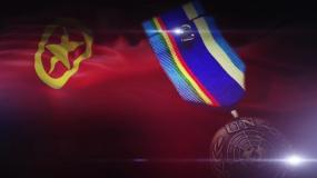 团旗旗帜和UN徽章视频素材