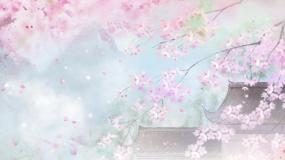 春光美-童丽视频素材