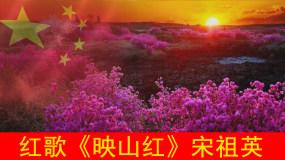 新版映山红配乐版+伴奏版永利官网网址是多少包