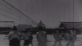 排球乒乓球视频素材
