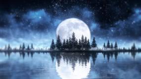 湖泊森林公园夜晚月亮永利官网网址是多少