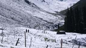 雪山骑马视频素材