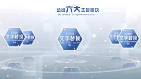 企业三大至九大业务分类说明AE模板