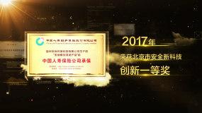获奖荣誉06AE模板