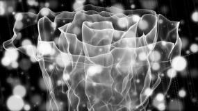 白色带通道唯美粒子花开背景永利官网网址是多少