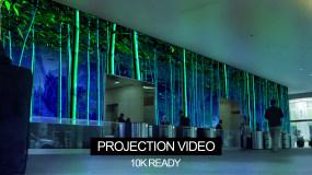 10K竹林望月超宽屏投影视频视频素材