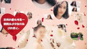 浪漫情人节表白视频/七夕求爱求婚ae模板AE模板