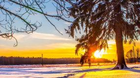阳光中的美丽雪景视频素材