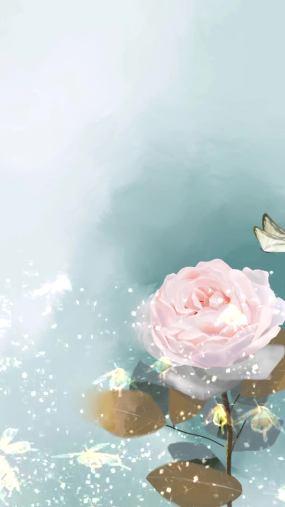 情人节唯美浪漫玫瑰花蝴蝶视频素材