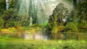 绿色树木草地湖面背景循环视频素材