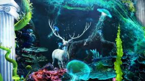 HY-VJ-HY海底麋鹿视频素材包