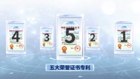 简洁证书展示AE模板